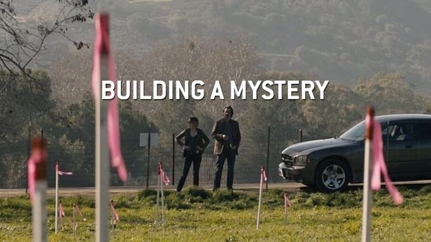 Building A Mystery