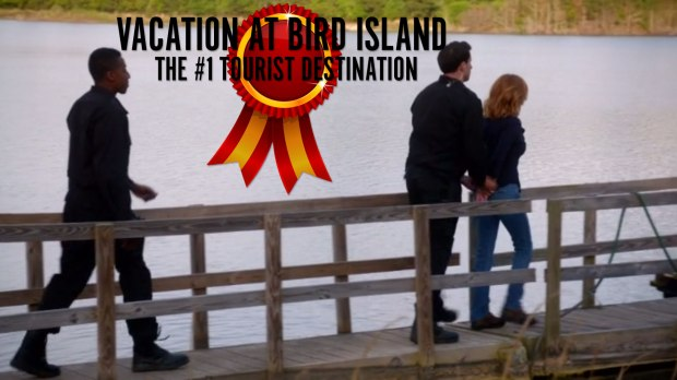 Vacation at Bird Island