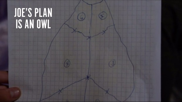 Joe's Plan Is An Owl